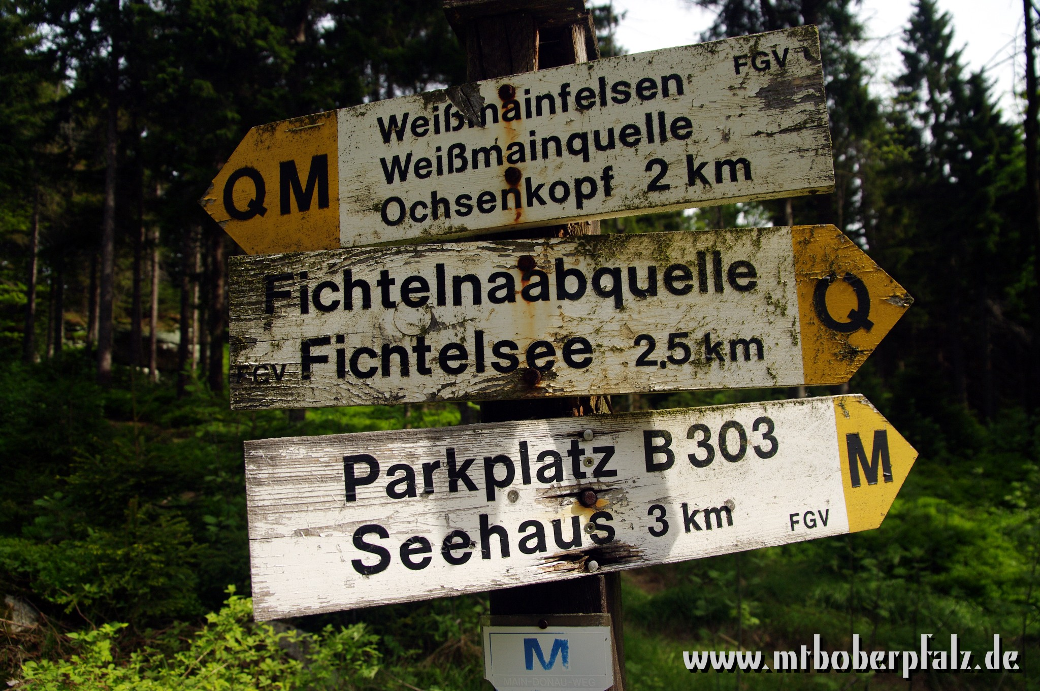 Singletrail schneeberg